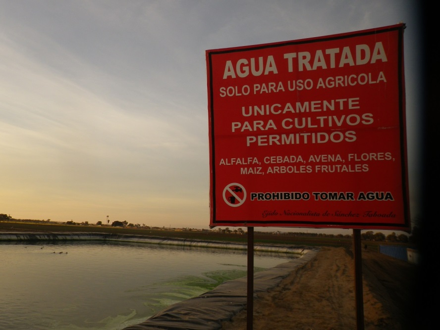 Non-drinking treated water ponds for selected allowed crops production in the Valley of Maneadero Baja California.